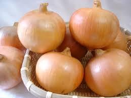 玉葱 10kg(道内)