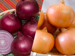 mix-onion